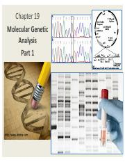 1 Ch19_MolecularGeneticAnalysis PART 1Pierce5th_1slide