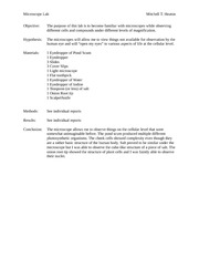 Microscope Lab- Lab Report