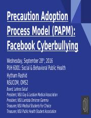 PAPM Cyberbullying.pptx