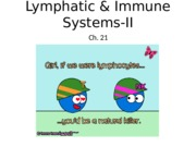 4 Lymphatic System 2