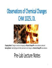 CHM 1025 DL Observations of Chemical Change Pre-Lab Power Point 2017.pdf