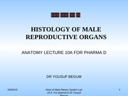 LEC 10 A Histology of Male Repro Sys for Pharm. D. Program I