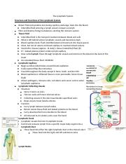 The Lymphatic System.docx