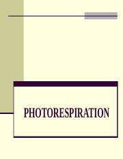 11. PHOTORESPIRATION (1)