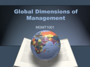 Topic 11_Globaldimensions- summer 13