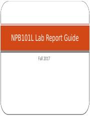Lab report guide.pptx