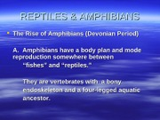 reptile_and_amphibians