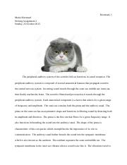 WritingAssignment2.docx
