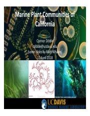 Marine_Plants_of_CA_2018_PLS 147_Dibble.pptx.pdf