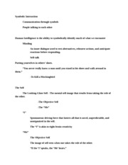 applications of symbolic interactionism theory essay