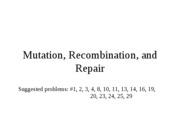 Chapter 15 Mutation, Recombination, and Repair