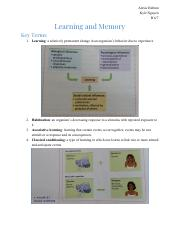 Psychology Learning and Memory.pdf
