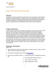 Unit Activity 2  The Chemistry of the Cell