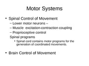 motor systems spinal control (1)