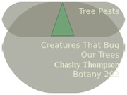 Assignment 26 - Lab 2-2 Tree Pests