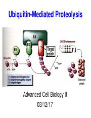 Ubiquitin-Mediated Proteolysis_with notes_on line
