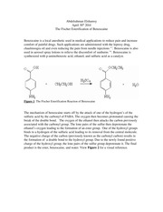 The-Fischer-Esterification-of-Benzocaine