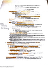 BIO212 chapter 13 regions of the brain part 2 class notes