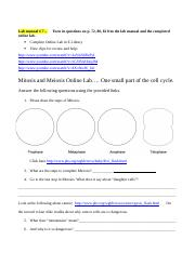 Mitosis and Meiosis Online Lab (1).doc