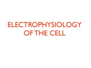 2 Electrophyiology I PDF copy