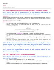 Energy - Notes.pdf
