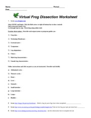 frog dissection worksheet with answers 2 frog dissection name. Black Bedroom Furniture Sets. Home Design Ideas