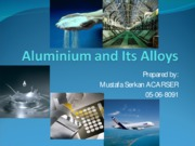 Aluminium and Its Alloys