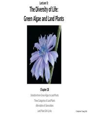 Lecture 9 - Diversity of Life - Green Algae and Land Plants EC.pptx
