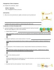 gwen_propagation_nerve_impulses_worksheet-1