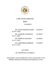 Case study analysis 3 - BMW