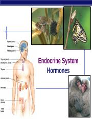 46Ch47Endocrine2009