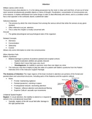 Attention class notes - Psych/Neuro 3515