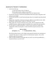 BS1005_Tutorial 4_Carbohydrates.pdf