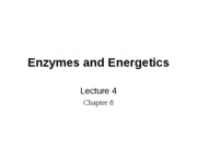 Enzymes and Energetics