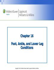 Chapter16_student, Foot, Ankle, Lower Leg-BU.ppt