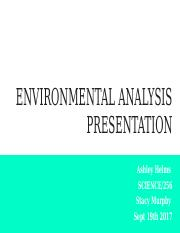 ENVIRONMENTAL ANALYSIS PRESENTATIONAh.pptx