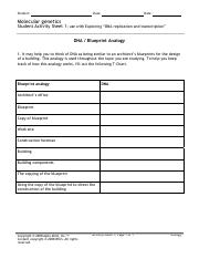 Dna blueprint analogy teacher teacher version molecular genetics dna blueprint analogy teacher teacher version molecular genetics student activity sheet 1 use with exploring dna replication and transcription dna malvernweather Gallery