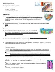 membrane_functions_worksheet week 1 .doc