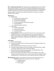 UTI – urinary tract infection notes .docx