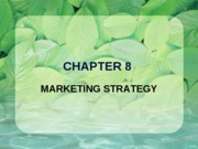 08 - Marketing Strategy