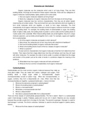 biology biomoleculereviewworksheet biomolecule worksheet organic molecules are the molecules. Black Bedroom Furniture Sets. Home Design Ideas