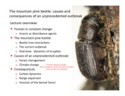 Lecture-7-Mountain-pine-beetle