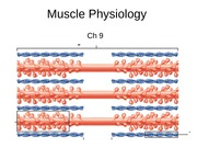 Week9&10_Muscle Physiology_s (1)