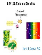 122.Ch8.Photosynthesis.LEARN.ppt