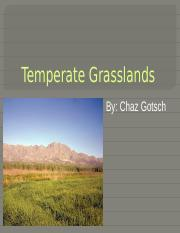 Temperate Grasslands apes.pptx