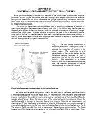 New Chapt. 27 -Org visual cortex copy 3