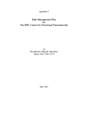 Sample Project Risk Management Plan