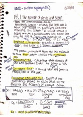 The Nature of Acids and Bases notes