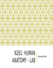 N261 Bland - Lab 3 - Tissues and Histology