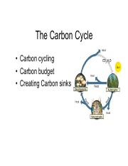 lecture 14-the carbon cycle